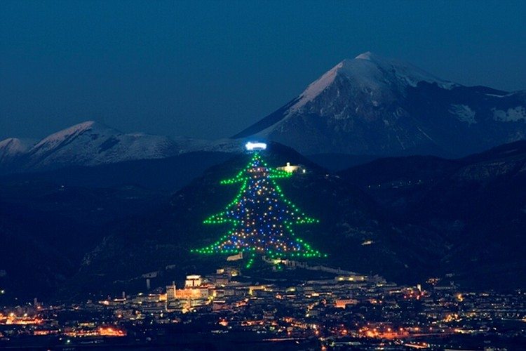 Pope Francis and Gubbio Christmas tree